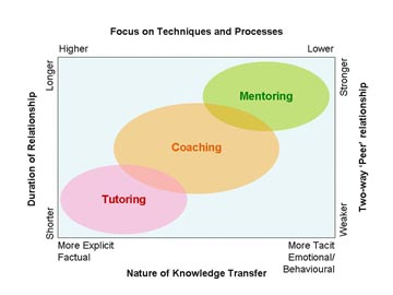 what are the basic elements of coaching mentoring relationship